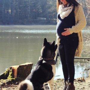 hochschwangere Frau mit ihrem Hund in der Natur