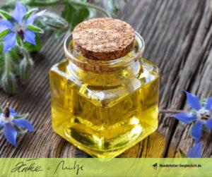 Borretsch Öl, Heilpflanze