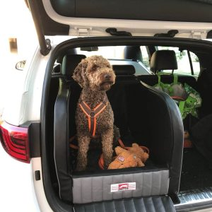 Dogstyler, Hundetransportbox