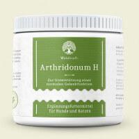 Arthridonum