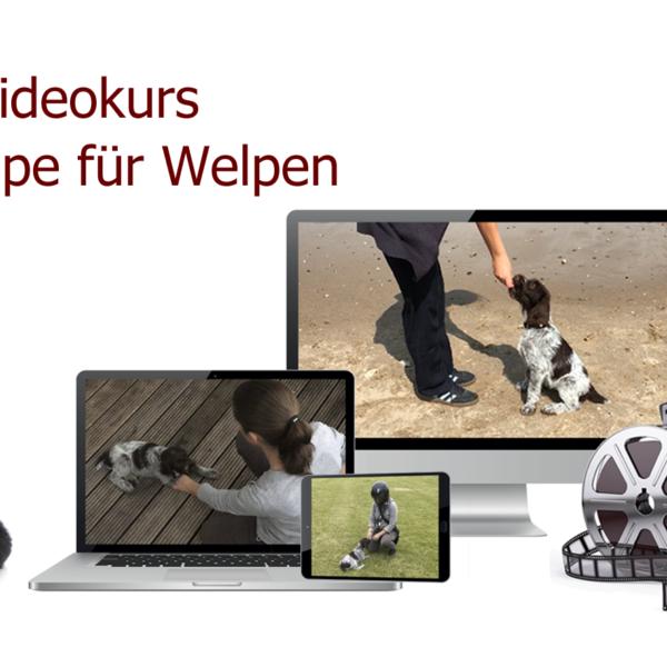 Online-Videokurs