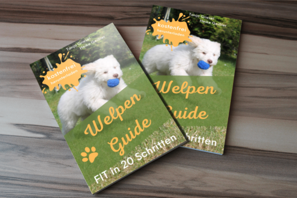 welpen guide 2x