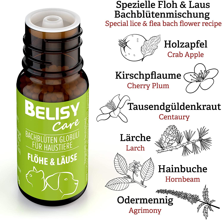 Flöhe & Läuse Globuli