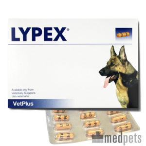 Lypex bei Pancreatitis